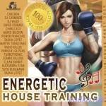Energetic House Training (2015)