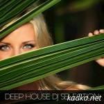 Deep House DJ Selection (2015)