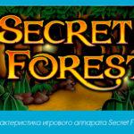 Характеристика игрового аппарата Secret Forest