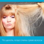 Что делать, когда очень сухие волосы