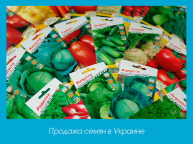 Продажа семян в Украине