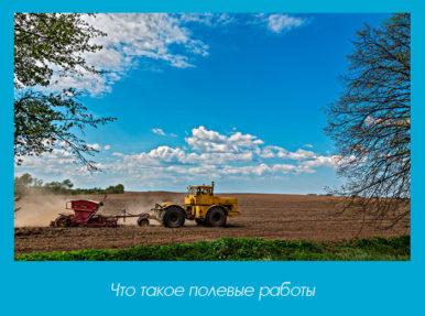 Что такое полевые работы