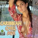 VA — Caribbean Chill Mix (2014)