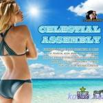 VA — Cesestial Assembly (2014)