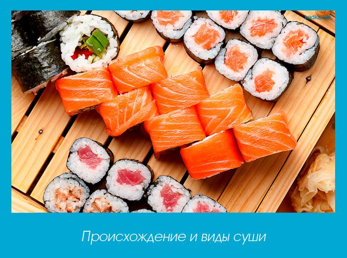 Происхождение и виды суши
